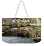 Yellow Dog Falls 4246 Weekender Tote Bag by Michael Peychich