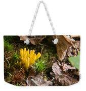 Yellow Fungus 1 Weekender Tote Bag