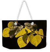 Yellow Leaves On A Tree Branch Weekender Tote Bag