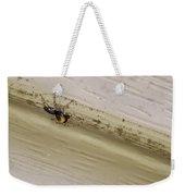 Yellow Palp Spider 1 Weekender Tote Bag