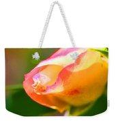 Yellow Rose Tipped In Pink Weekender Tote Bag