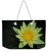 Yellow Waterlily - Nymphaea Mexicana - Hawaii Weekender Tote Bag