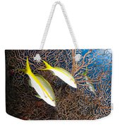 Yellowtail Snappers And Sea Fan, Belize Weekender Tote Bag