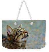 Yes I Am A Pretty Kitty Weekender Tote Bag