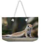Yoga Ground Squirrel Style Weekender Tote Bag
