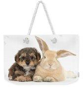 Yorkipoo Pup With Sandy Rabbit Weekender Tote Bag