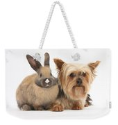 Yorkshire Terrier And Young Rabbit Weekender Tote Bag