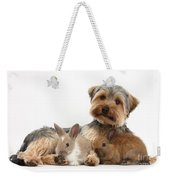 Yorkshire Terrier Dog And Baby Rabbits Weekender Tote Bag