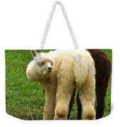 You Can't Sneak Up On Alpacas Weekender Tote Bag