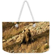 You Whistling At Me? Weekender Tote Bag