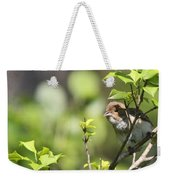 Young Blue Grosbeak Weekender Tote Bag