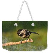 Young Chickadee Weekender Tote Bag
