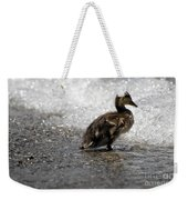 Young Duck On The Beach Weekender Tote Bag