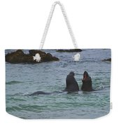 Young Elephant Seals Sparring Weekender Tote Bag