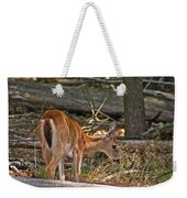 Young Whitetail Weekender Tote Bag