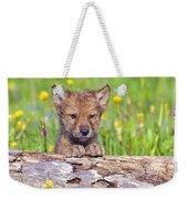 Young Wolf Cub Peering Over Log Weekender Tote Bag