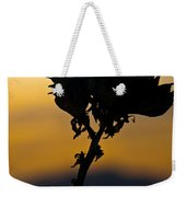 Yucca At Sunset Weekender Tote Bag