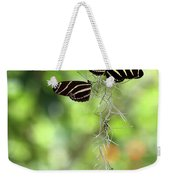 Zebra Butterflies Hanging Out Weekender Tote Bag