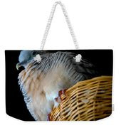 Zebra Dove From Above Weekender Tote Bag