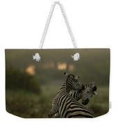 Zebra Equus Burchelli Weekender Tote Bag