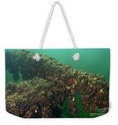 Zebra Mussels Weekender Tote Bag
