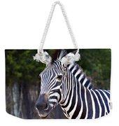 Zebra Symmetry  Weekender Tote Bag