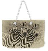 Zebra Trio Weekender Tote Bag