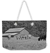 Zebras In San Simeon Weekender Tote Bag
