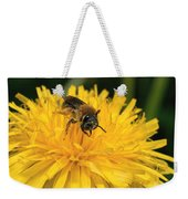 A Bee In A Dandelion Weekender Tote Bag