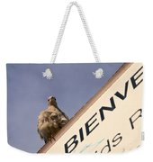 African Collared Dove 2 Weekender Tote Bag