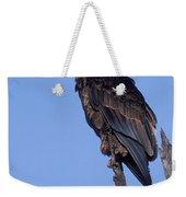 Bataleur Eagle Viewpoint Weekender Tote Bag