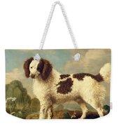 Brown And White Norfolk Or Water Spaniel Weekender Tote Bag by George Stubbs