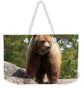 Brown Bear 4 Weekender Tote Bag
