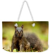 Curious Black Squirrel Weekender Tote Bag by Mircea Costina Photography