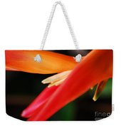 Fine Art - Bird Of Paradise Weekender Tote Bag