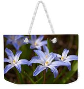 Glory Of The Snow 1 Weekender Tote Bag