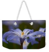 Glory Of The Snow 2 Weekender Tote Bag