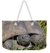Gopher Tortoise Close Up Weekender Tote Bag