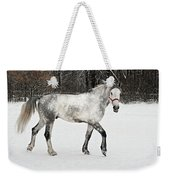 Light  Grey Horse Goes On A Winter Glade  Weekender Tote Bag