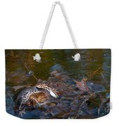 Mixed Frogs Weekender Tote Bag