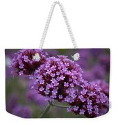 Purpletop Vervain Weekender Tote Bag