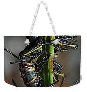 Romalea Microptera Hierarchy Weekender Tote Bag
