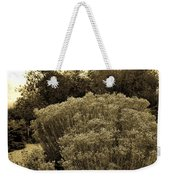 Shrub In Santa Fe Weekender Tote Bag