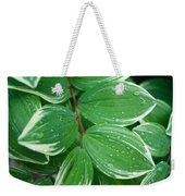 Tears Of Solomons Weekender Tote Bag