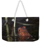 The Common Frog 2 Weekender Tote Bag