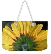 Water Drops On Gerbera Daisy Weekender Tote Bag