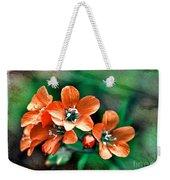 Wildflowers 5 -  Polemonium Reptans  - Digital Paint 3 Weekender Tote Bag
