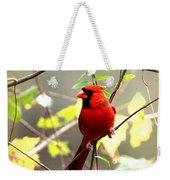 0138 - Cardinal Weekender Tote Bag