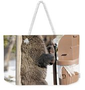 060510-grizzly Back Scratch Weekender Tote Bag