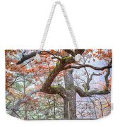 0981 Fall Colors At Starved Rock State Park Weekender Tote Bag
